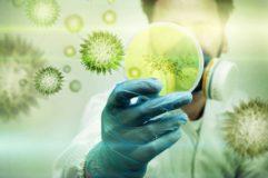 Дезинфекция от коронавируса в Краснодаре